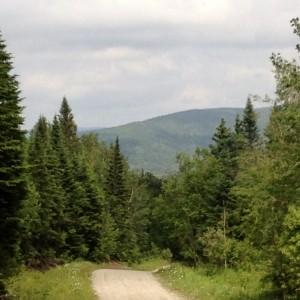 sentier en montagne